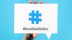 #BrunoDavidGallery_2014_small
