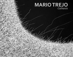 Mario-Trejo_Bruno-David-Gallery