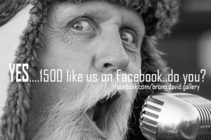 Bruno-David-Gallery_like-us-on-facebook_6-2016