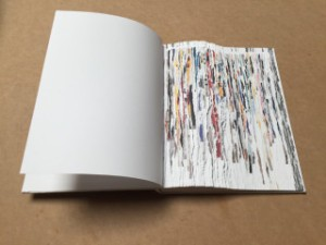 Buzz-Spector_Fine-Book-Magazine_Bruno-David-Gallery_10-2015