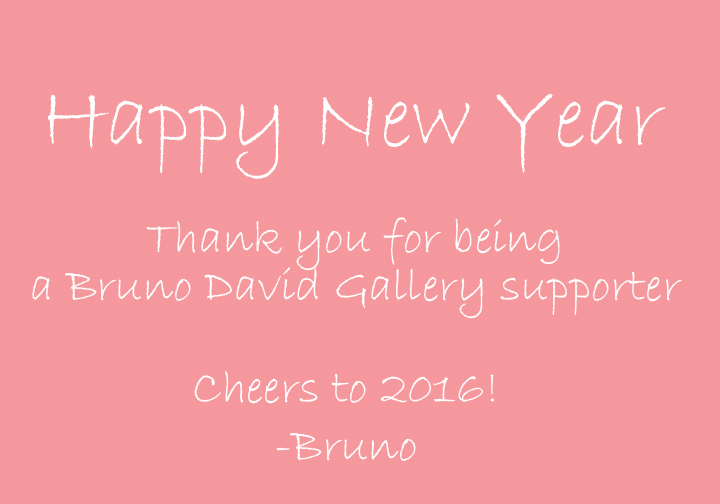 happy-new-year_2016_Bruno-David-Gallery