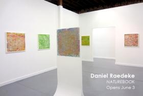Daniel-Raedeke_Bruno-David-Gallery_index_5-28-2016
