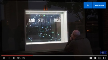 Bunny-Burson_HECTV_Bruno-David-Gallery_Window-On-Forsyth_b