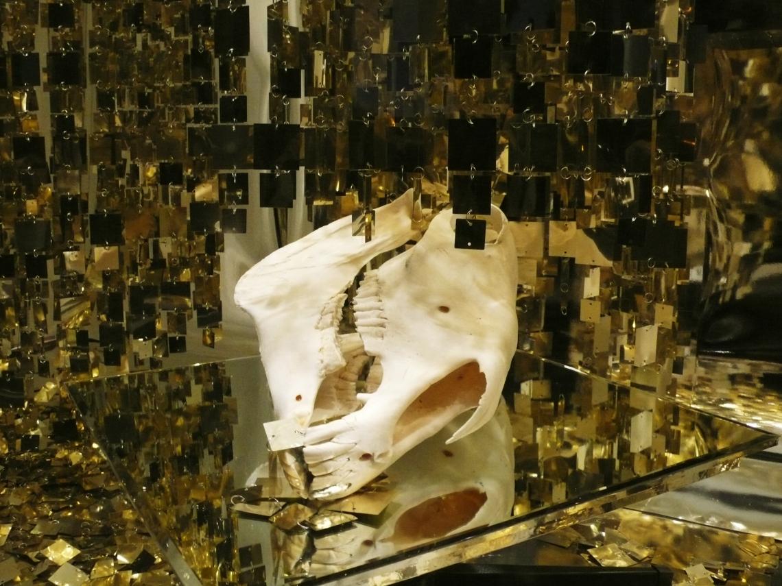 Andrea-Stanislav_Bruno-David-Gallery_window-on-forsyth_C