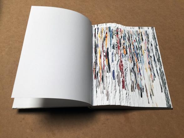 Buzz-Spector_Bruno-David-Gallery